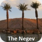 The Negev